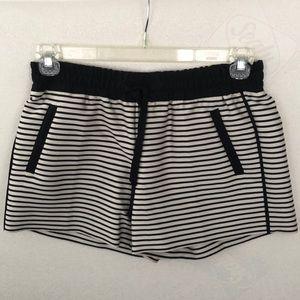 Loft Shorts: Cream w/Blk stripe